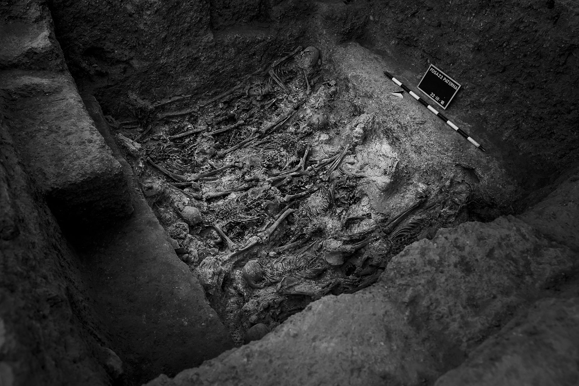 Los restos de 33 personas, fusiladas en 1940, fueron encontrados en la fosa 22 del cementerio de Paterna, Valencia, en marzo de 2018.
