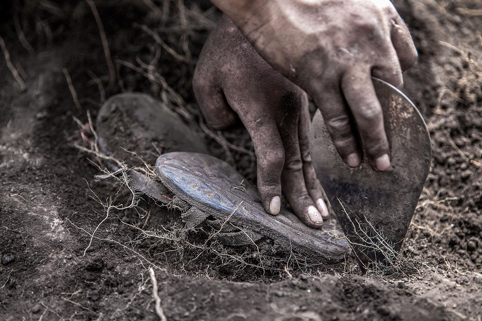 Se inician las exhumaciones en el área conocida como Suyrurupampa y lo primero que encuentran es el cuerpo de un niño.