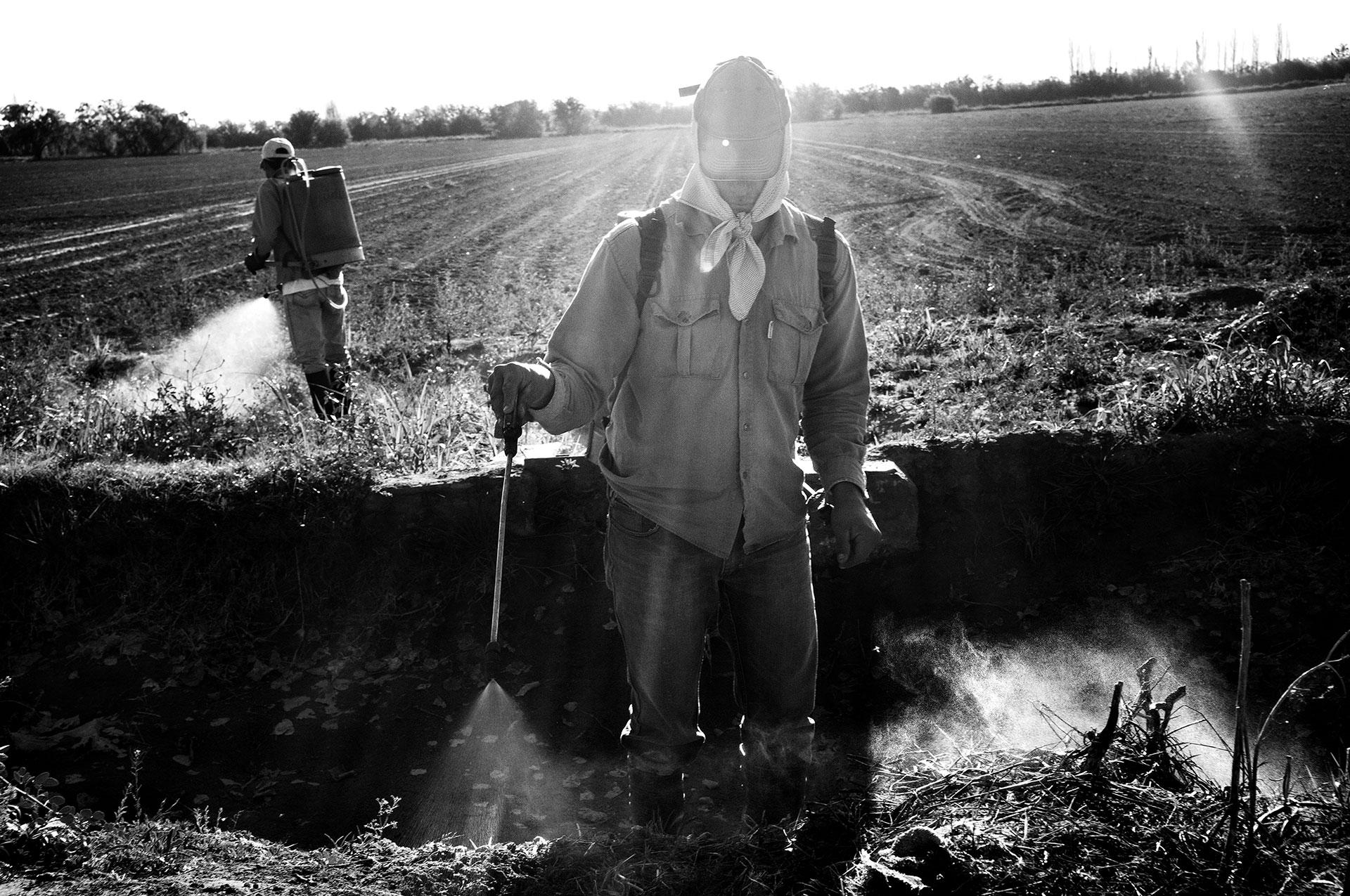 16/9/2015. Villa Dolores, Provincia de Córdoba, Argentina. Fumigadores trabajando con productos químicos agrícolas. Recientemente, un estudio de la Universidad de La Plata señaló que entre el 70% y el 80% de las frutas y hortalizas vendidas contienen al menos 2 o 3 agrotóxicos.